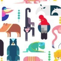 Wild Animals colores